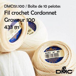 Fil à crochet 10 pelotes 20 g cordonnet spécial 433 m grosseur 100