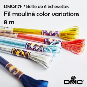 6 échevettes 8 m Fil mouliné color variations