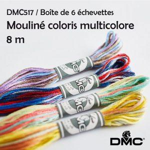 6 échevettes 8 m mouliné coloris multicolore